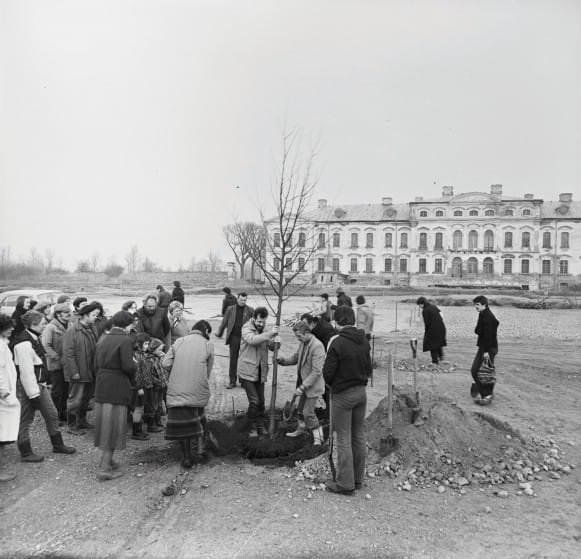 Pirmās centrālās alejas liepiņas stādīšana 1984. gadā